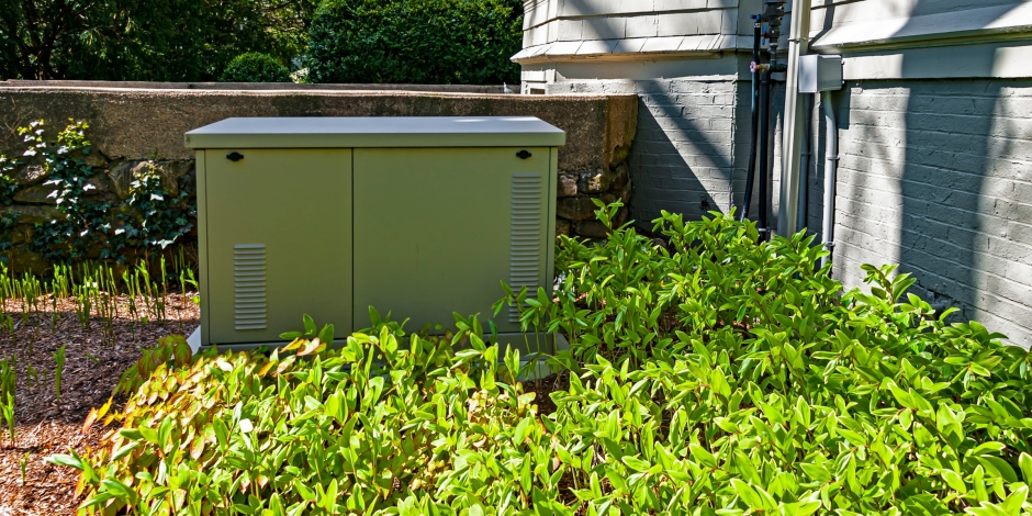 residential home standby generator on concrete slab with green leafed plant in front